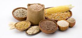 نرخ خرید تضمینی دانههای روغنی افزایش مییابد