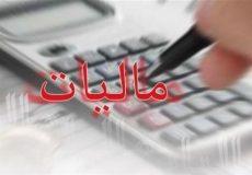 دولت درباره اصلاح نظام مالیاتی به توافق با مجلس عمل نکرد