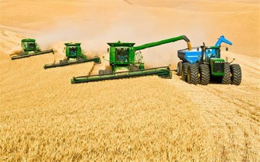 ۷ رسته دیگر به رستههای بشدت آسیب دیده بخش کشاورزی اضافه شدند