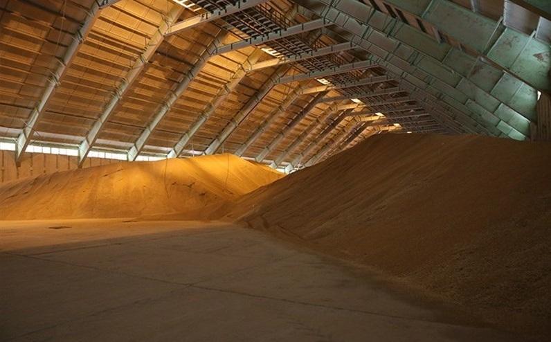 خرید تضمینی ۱ میلیون و ۱۰۰ هزار تن گندم کشاورزان