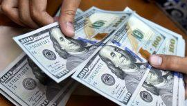 معامله ۱۶۳ میلیون دلار در سامانه نیما