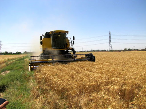 """واکنش گمرک به یک ادعای """"آشنا""""/آیا روسیه مشتری محصولات کشاورزی ایران نیست؟"""